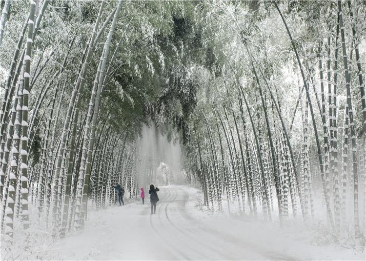 南山竹海雪景