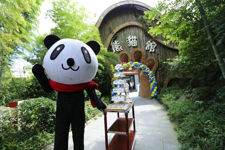 南山竹海 熊猫生日