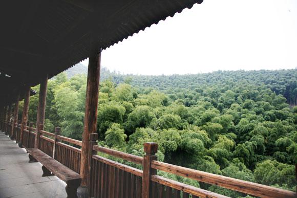 南山竹海黄金桥