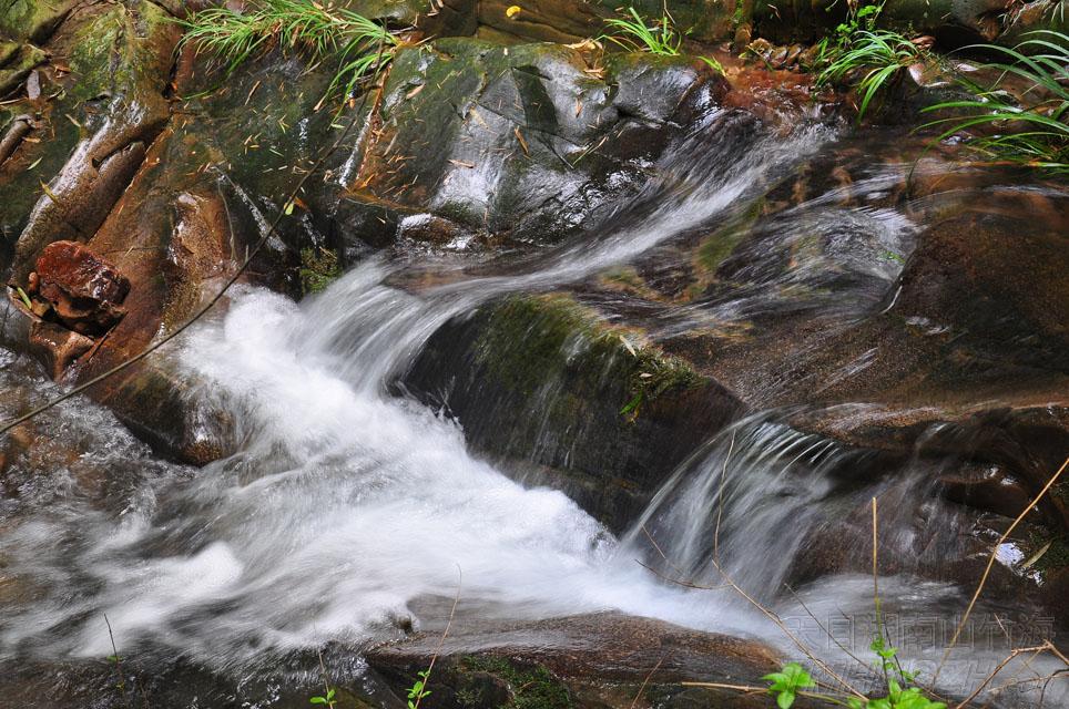 潺潺溪流,乐竹也乐水