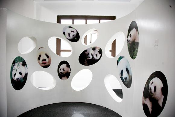 南山竹海熊猫馆-天目湖南山竹海景区官方网站