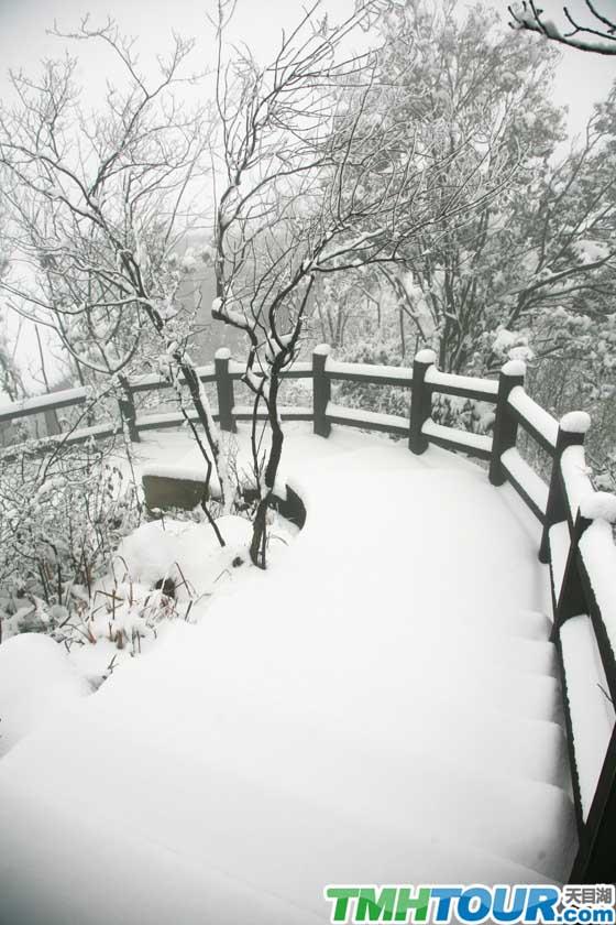 南山竹海雪景赏析
